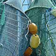 Shrimp Net Close Up Poster