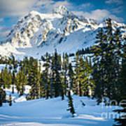 Shuksan Winter Paradise Poster by Inge Johnsson