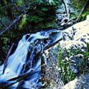 Side View Of Bumping Creek Falls Poster
