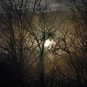 Silent Foggy Sunrise Poster