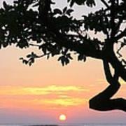 Silhouette Sunrise Poster
