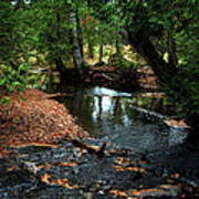 Silver River Channel In Autumn Poster