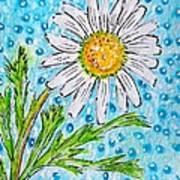 Single Summer Daisy Poster