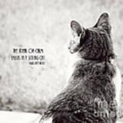 Sitting Cat Poster