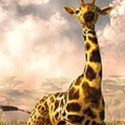 Sitting Giraffe Poster