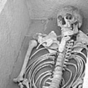 Skeleton  Poster