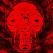 Skull In Negative Red Poster