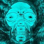 Skull In Negative Turquois Poster