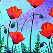 Sky Poppies Poster