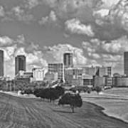 Skyline Of Fort Worth Poster