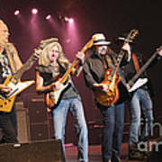 Skynyrd-group-7642 Poster