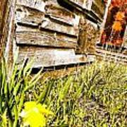 Slash Of Spring Poster