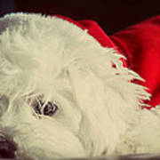Sleepy Santa Poster