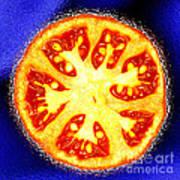 Sliced Tomato Poster