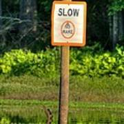 Slow No Wake Poster