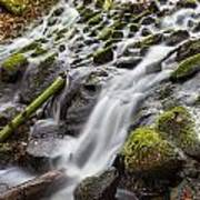 Small Waterfalls In Marlay Park Poster