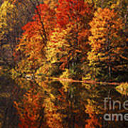Smoky Mountain Colors - 235 Poster