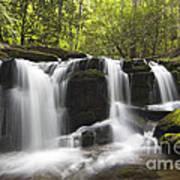 Smoky Mountain Waterfall - D008427 Poster