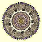 Snake Mandala Poster