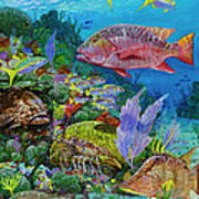 Snapper Reef Re0028 Poster