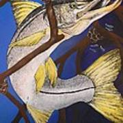 Snook Painting Poster by Lisa Bentley