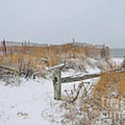 Snow And Sand Poster by Catherine Reusch Daley