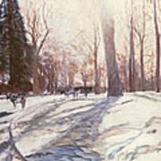 Snow At Broadlands Poster