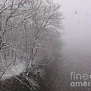 Snow At Bulls Island - 12 Poster