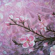 Snow Blossom Poster by Arlissa Vaughn