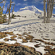 Snow Covered Mount Hood In Oregon Poster