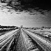 snow covered untreated rural small road in Forget Saskatchewan Canada Poster by Joe Fox