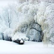 Snow Dream Poster