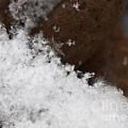 Snow Flake Macro 2 Poster