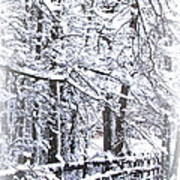 Snow-img-2174-merry Christmas Poster