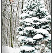 Snow In Ohio Poster