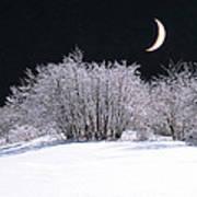 Snow In The Moonlight Poster by Giorgio Darrigo