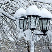 Snow On Lamps Poster