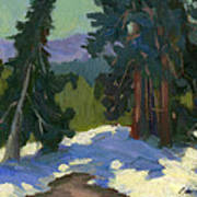 Snow Shadows Mammoth Mountain Poster