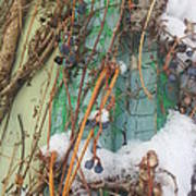 Snow Vines Poster