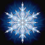Snowflake - 2013 - A Poster by Richard Barnes