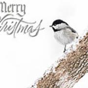 Snowy Chickadee Christmas Card Poster