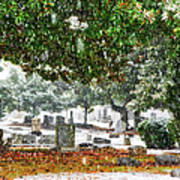 Snowy Day At The Cemetery - Greensboro North Carolina Poster by Dan Carmichael