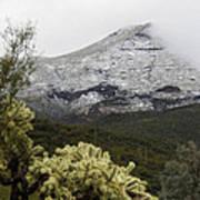 Snowy Desert Mountain 1 Poster