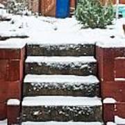 Snowy Garden Poster by Tom Gowanlock