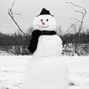 Snowy Joy Poster