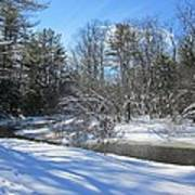 Snowy Otter Brook Poster