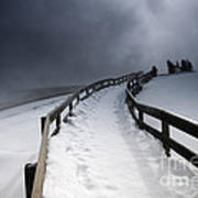 Snowy Pathway Poster
