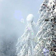Snowy Trees Poster by Kae Cheatham