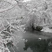 Snowy Wissahickon Creek Poster