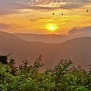 Soaring At Sunrise - Blue Ridge Parkway I Poster